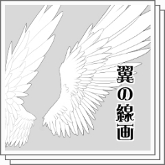 翼 Clip Studio Assets
