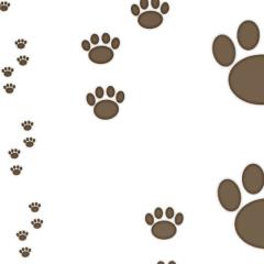 犬の足跡 Clip Studio Assets